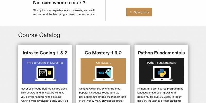 qvault programming courses